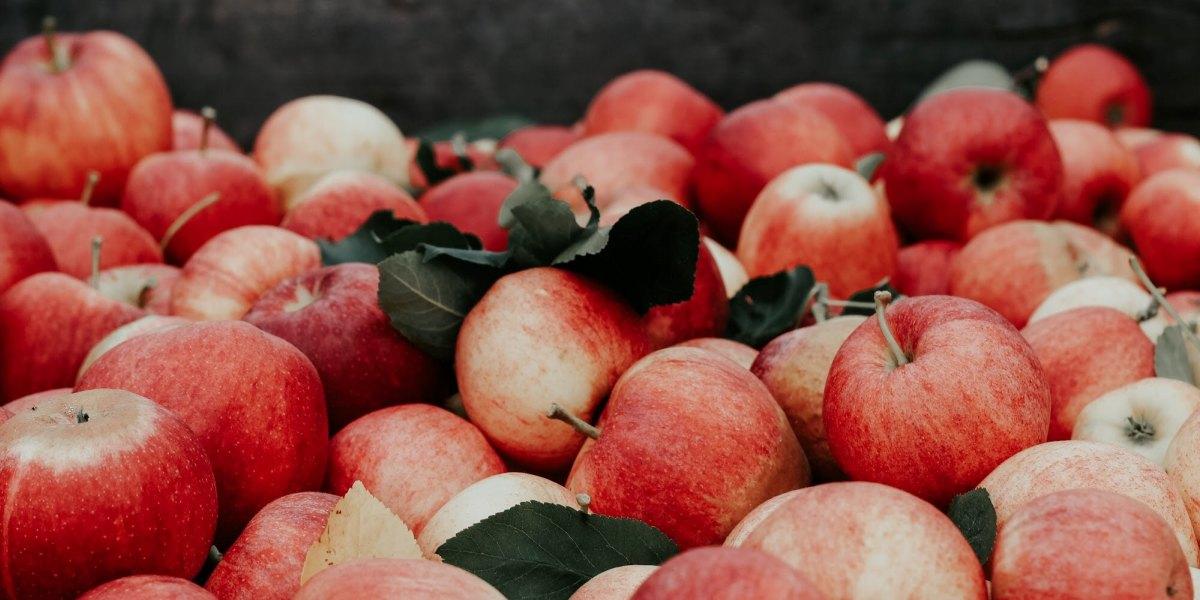 sites de rencontre pour les fans de pomme
